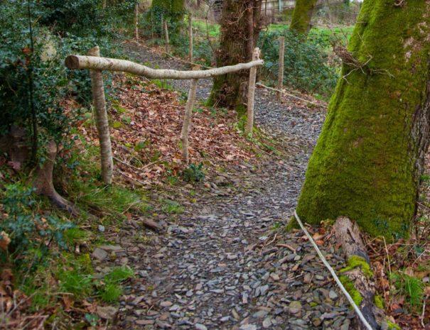 path-to-woodland-lodges-wampford